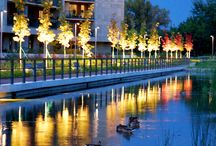 zieleń osiedlowa, architektura krajobrazu Mokotow Park / projekt architektury krajobrazu osiedla  , gospodarka woda opadową
