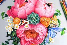 Рисунки Цветными Карандашами