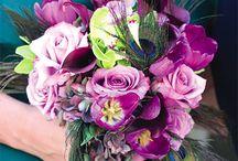 Nunta in violet/Violet Weddings