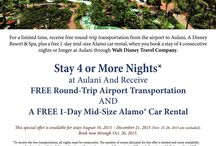 Disney's Aulani Resort & Spa / Disney Hawaiian resort, Disney Hawaii vacation, Aulani Resort information