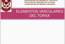 presentaciones medicina  / by Caren Duaarte