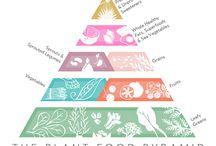 Plant Food Pyramid