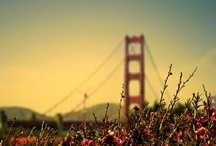 Once I will go to San Francisco