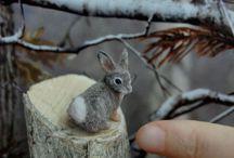 Cute for Cute Sake / Adorable things