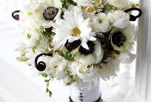wedding planner / by Nancy Bautista Bogdanoff