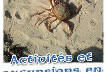 - le français en ligne