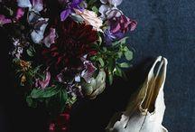 botanical + dark / by Nikki Clark