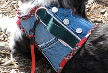 Denim Clothing for Pets