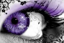 Everything Purple / by Julie Steigerwalt