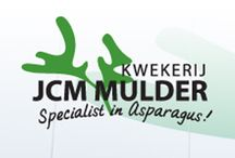 G-Fresh grower J.C.M. Mulder / JCM Mulder Nursery is specialised in the cut flower cultivation of several species of asparagus on 40,000 m2. The species cultivated are Asparagus Setaceus, Asparagus Densiflorus Meyers, Asparagus Falcatus, Asparagus Umbellatus and Asparagus Densiflorus Cwebe.