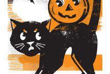 Black Cats   Halloween / For my Halloween cat, Buddy Love / by Sandy Weinstein