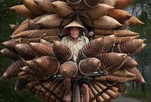 Photography - Vietnam inspiration