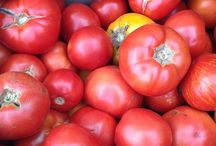 Tomatoes / Where do you think ketchup comes from? Certainly not plastic bottles!