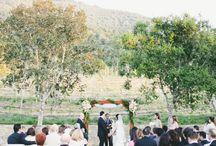 Wedding Ceremonies / Wedding Ceremonies