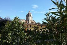 nel cuore il tricolore / snapshots of Italy