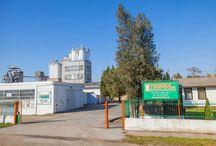 Termika Ad Zrenjanin / Termika A.D. Zrenjanin  je jedini proizvođač perlita na prostoru Republike Srbije. Bavi se proizvodnjom i prometom  materijala na bazi ekspandiranog perlita, ekspandiranog mlevenog perlita i suvih perlitnih termoizolacionih mešavina za upotrebu u industriji, građevinarstvu i poljoprivredi. Iskustvo dugo preko 50 godina učinilo je da postane vodeći proizvođač ovog materijala i u regionu.