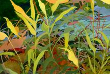 Patty Haller, Artist / Paintings and drawings from nature