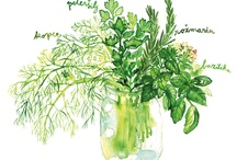 Watercolor delights / by Emily Pell