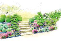 #projet Jardin chambre d'amis