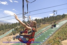 Newpark Resort - Nearby Adventures