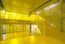 basics geel / yellow