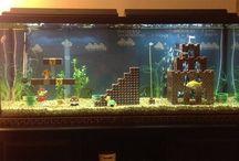 aquariom