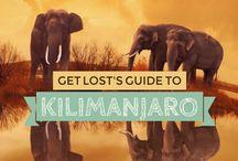Kilimanjaro / Everything you need to know about climbing Mount Kilimanjaro!
