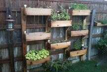 garden ideas / by Amyie Kao