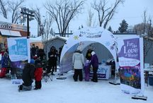 Winter Festivals / Popular winter events in each state.  Find winter festivals, shows,and events that happen in January and February.