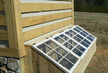 Greenhouse Ideas for Old windows