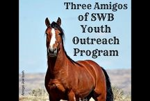 Great Causes for the Horses
