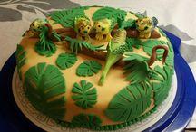 Budgie Cakes