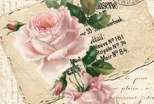 ♥♥Vintage+obrázky+herbář♥♥