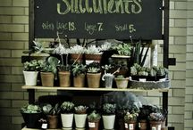 If I was a Florist