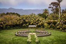 Wedding   Biltmore