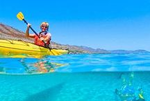 Activities / by Visit Baja California Sur