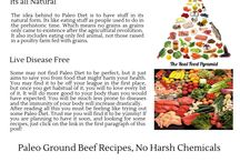 Paleo Ground Beef Recipes / I have experienced some great results from Paleo recipes and in particular the ground beef as this was something I wanted to keep in my day to day lifestyle.