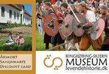 Viking / Viking, historie, religion