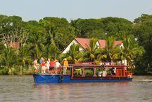 Suriname River fun  / having fun on the rivers of Suriname: Suriname rivier, Commewijne rivier, Coppename rivier