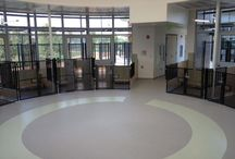 Seamless Floors in Public Spaces / Kennels, walkways, retail areas, etc.