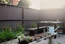 /garden