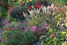 Cottage Gardens / Beautiful and inspiring cottage garden designs and ideas.