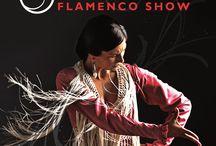 Espectáculo de flamenco JALEO / Un espectáculo de calidad, para sentir muy de cerca el alma flamenca. Un paseo por sus cantes y sus bailes, disfrutando del colorido y la fuerza de este arte. Una experiencia cargada de pasión, tratada con el respeto que se merece el Flamenco; Patrimonio Inmaterial de la Humanidad.   MARTES  (13'30h) JUEVES (13'30h) Y SÁBADO  (14'00h).