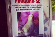 Instagram Catraca Livre / As fotos mais lindas do Instagram do Catraca Livre https://www.instagram.com/catracalivre/