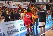 """La mascota """"El Guaro"""" / Nuestra mascota oficial. Un divertido loro que coloca la fiesta tanto en la cancha como en las gradas. Su ocurrencia hace reir a grandes y chicos."""