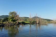 Parco naturale del lago trasimeno