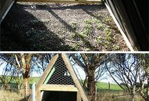 Swing chook shed