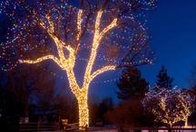 Holiday Lighting / by Kathleen Mathena