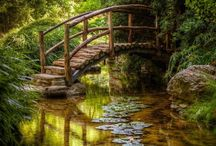 puentes esanques