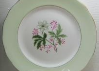 China Replacements / Cups, Saucers, Plates, Bowls replacements
